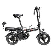 iconBIT E-BIKE K202